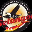 team selangor
